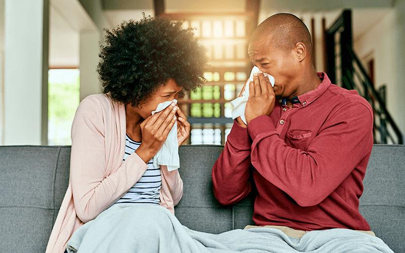 prevenir gripe