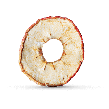 Close-up of a single foodspring apple ring