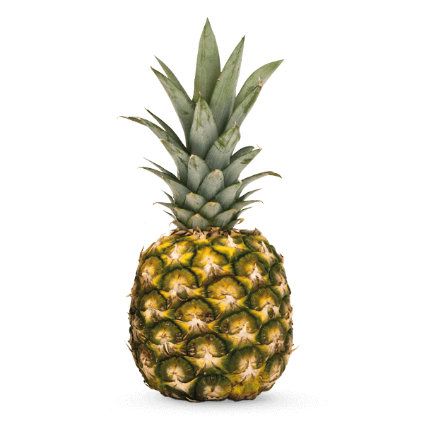 Front View Ananas