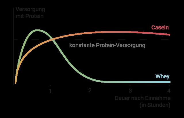 Achsendiagramm, dass die sich ergänzende Wirkungsdauer und den Zeitpunkt der Wirkungen darstellt.