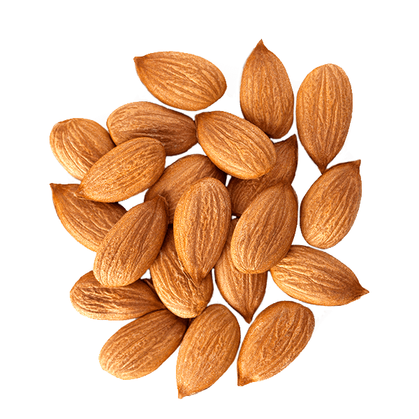 Table Top Almonds