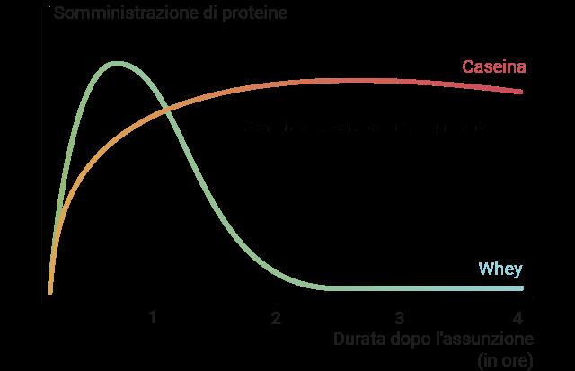 Diagramma cartesiano che rappresenta la maggiore durata e il momento in cui si raggiungono gli effetti.