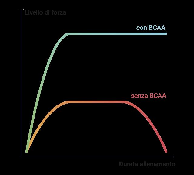 Grafico dell'effetto dei BCAA