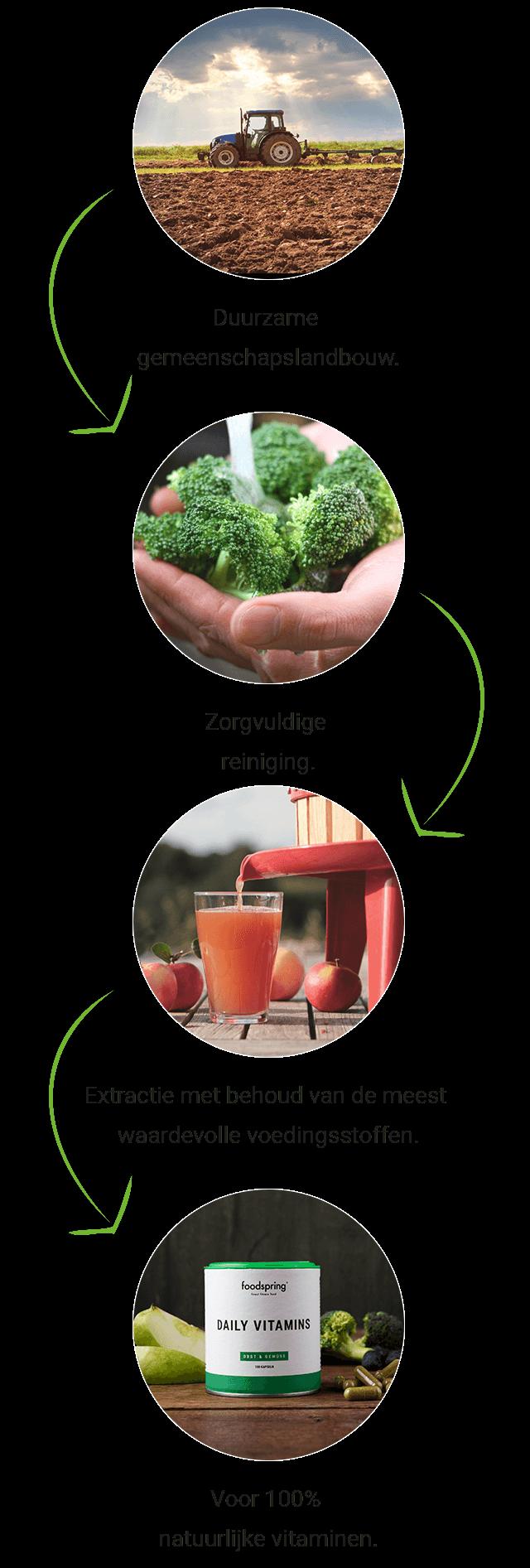 Productieproces van de Daily Vitamins capsules