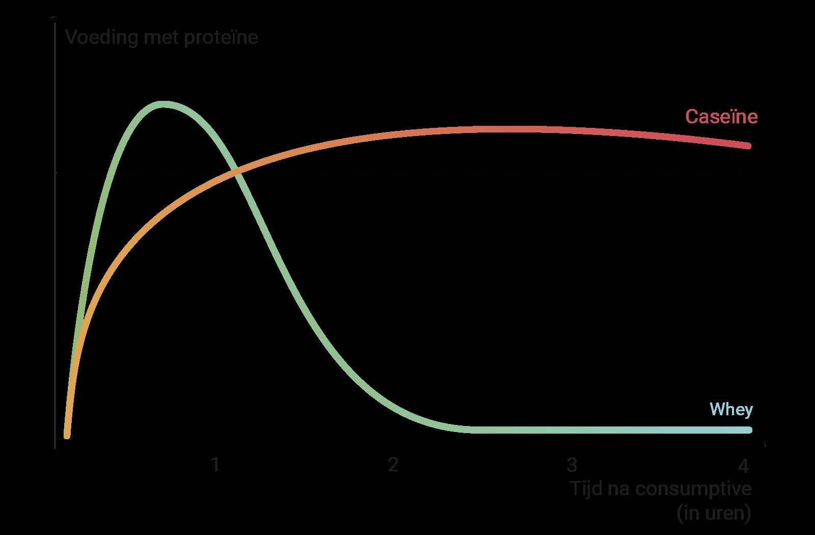 Grafiek, die de elkaar aanvullende werkingsduur en het tijdstip van de werking weergeeft.