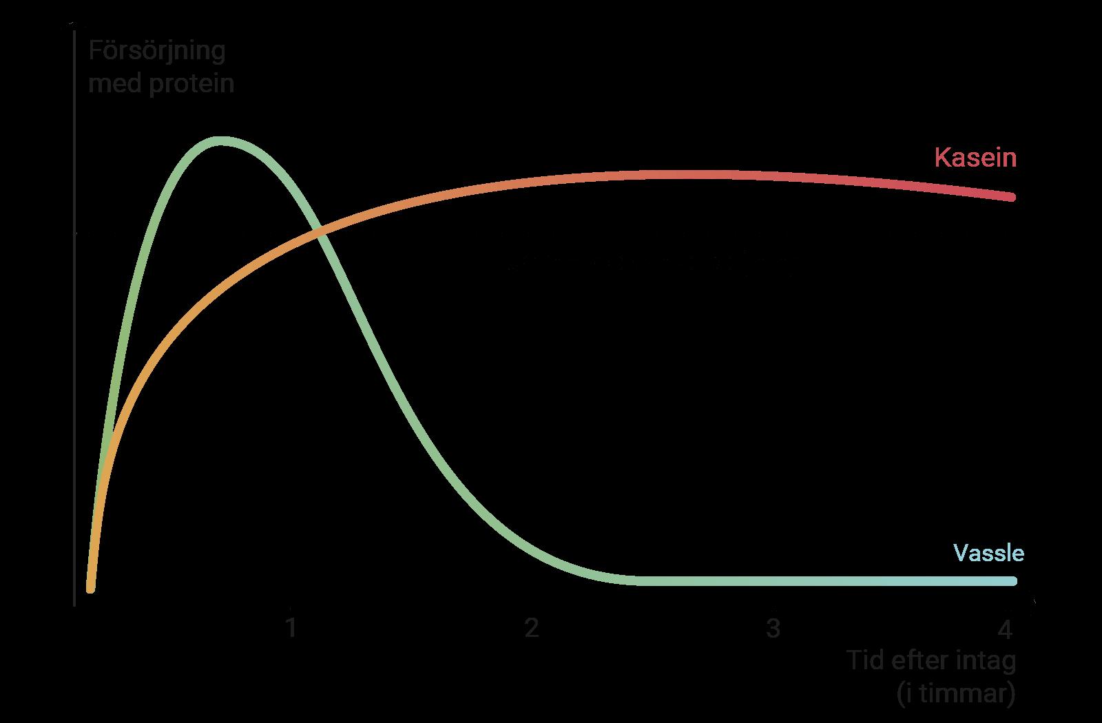 Diagrammet visar hur produkterna kompletterar varandra genom olika verkningslängd och tidsmässig effekt.