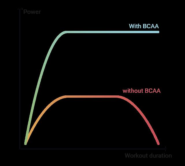 Chart - BCAA effect