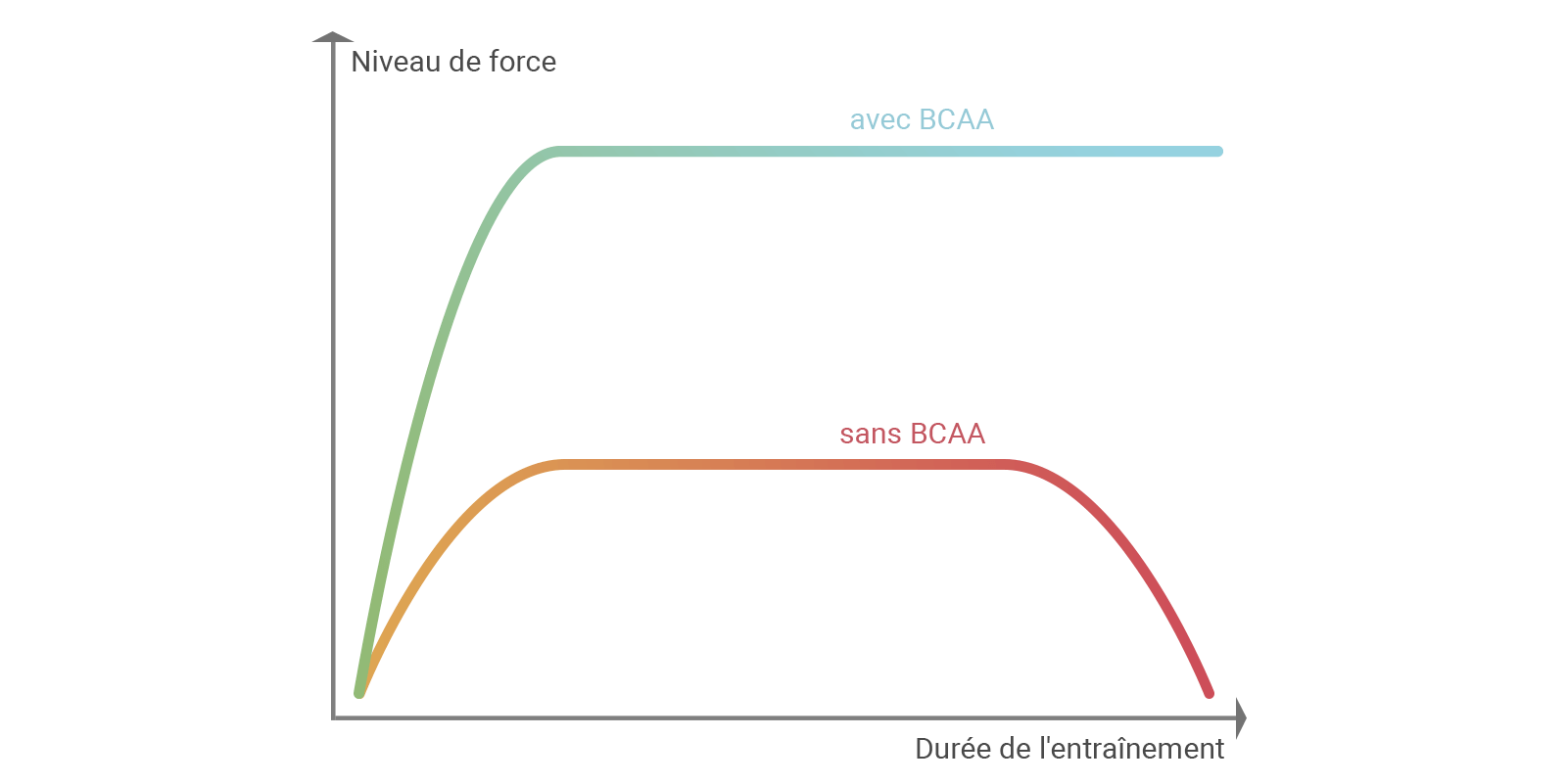 Diagramme de performance avec ou sans BCAA