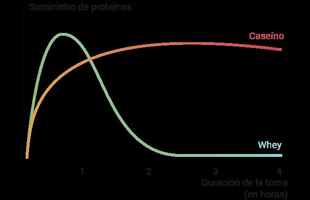 Diagrama de ejes donde aparece la duración de los efectos complementarios y el momento en el que estos se producen.