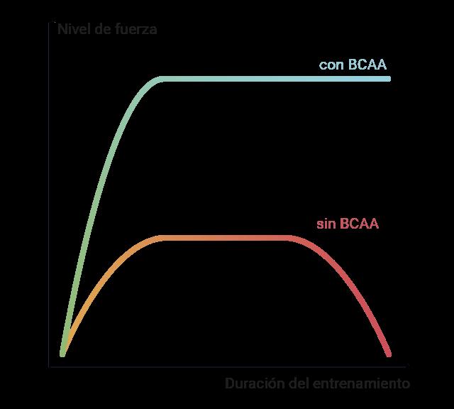 Gráfico del efecto de los BCAA