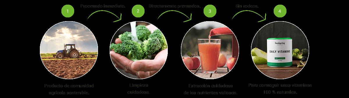 Daily Vitamins naturales manzano