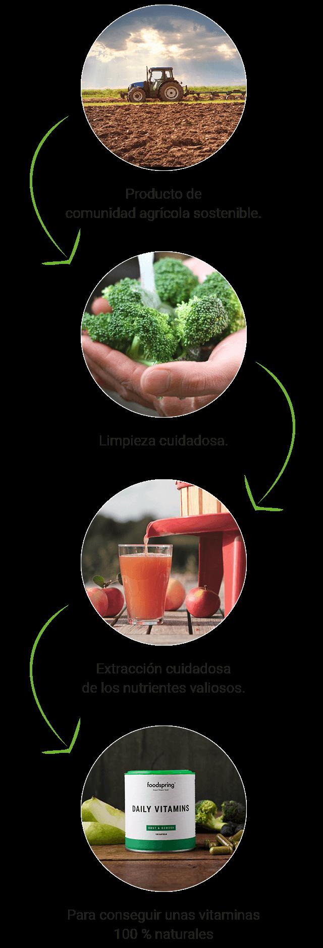 Proceso de fabricación de las cápsulas de Daily Vitamins