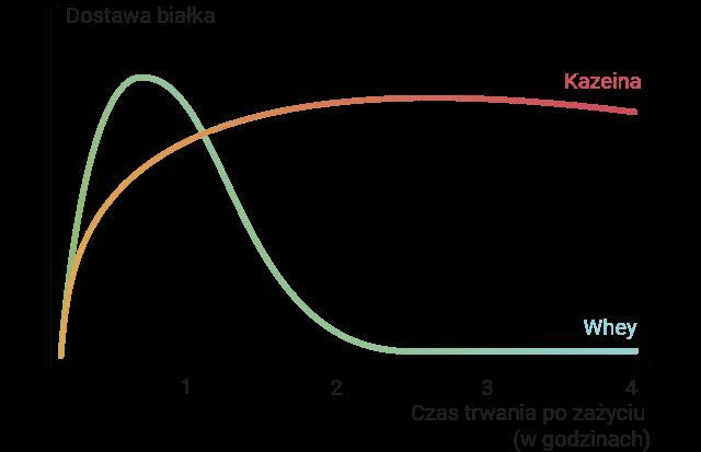 Wykres pokazujący uzupełniające się wczasie okresy ipory działania.