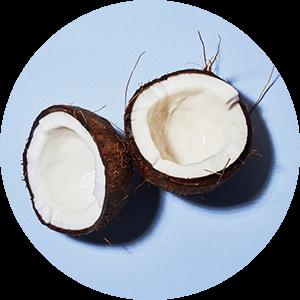 Cocos-Crisp-Geschmack