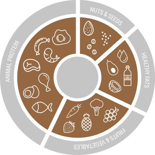 Paleo Foodstuffs Overview