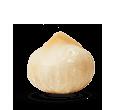 Ilustración de una nuez de Macadamia