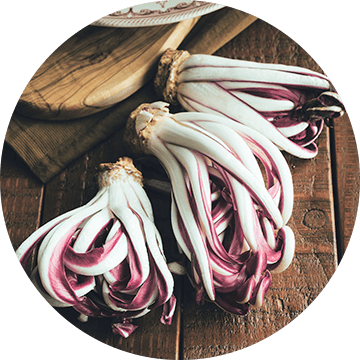 Inulin fibre from chicory root